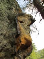 Protažení železitých impregnací vyvětrávajících jako roury z povrchu pískovců, tzv. železné klády, ukazuje směr proudění podzemních vod v době jejich vzniku., Markéta Vajskebrová, 2016