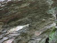 Výrazně břidličnaté a místy provrásněné tzv. novoměstské fylity, vystupující v řadě skalních výchozů při březích Metuje., Markéta Vajskebrová, 2016