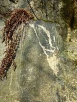 Severní lom, detail křemen-živcových smouh a žilek v amfibolitu. , Josef Večeřa, 2015