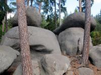 Kamenné stádo tvořené balvanovitými útvary a jednotlivými balvany většinou hřibovitých forem až viklanů., Markéta Vajskebrová, 2015