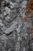 Klasický a světoznámý odkryv budují zvrásněné deskovité vápence lochkovského souvrství. , Motyčková Kamila - Šír Jiří, 2013