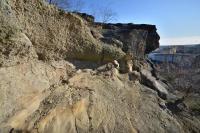 Rozsáhlé skalní výchozy, tvořené karbonskými horninami stáří westfal na něž ostře nasedají svrchnokřídové uloženiny, jejichž sled počíná bazálními slepenci. Na hranici je rozlišitelný rozdílný sklon vrstev obou útvarů., Motyčková Kamila - Šír Jiří, 2015
