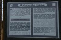 Podzemní vodou napájené slatiniště., Motyčková Kamila - Šír Jiří, 2015