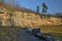 Část lomové stěny původně hlubšího lomu odkrývá nasedání horizontálně zvrstvených svrchněkřídových vápnitých pískovců na vrásněné horniny starohorního kutnohorského krystalinika. , Motyčková Kamila - Šír Jiří, 2015
