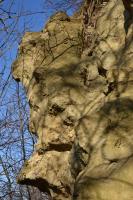 Rozsáhlý silniční zářez v druhohorních křídových pískovcích korycanských vrstev. Lokalita je význačná přítomností hojných zkamenělých stop po vrtavé a hrabavé činnosti organismů na dně cenomanského moře., Motyčková Kamila - Šír Jiří, 2015