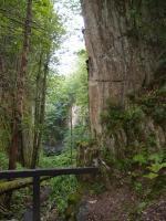 Opuštěný Bischofův lom na vápenec, který ukrývá vstup do nejdelší jeskyně KRNAPu - krasové Albeřické jeskyně., Markéta Vajskebrová, 2017