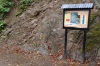 Transgrese kambria na proterozoikum v údolí Berounky při silnici z Týřovic do Roztok.V levé části kambrium a vpravo proterozoikum.  , Pavla Gürtlerová, 2013