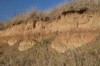 Sprašové souvrství s fosilními půdami, severní stěna., Motyčková Kamila - Šír Jiří, 2015