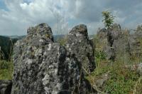 Přirozeně vypreparovaný sopouch vysoký asi 12 m s patrnou sloupcovitou odlučností čediče., Motyčková Kamila - Šír Jiří, 2009