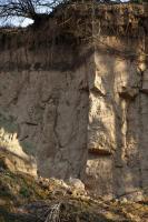 Hluboká erozní rokle ve sprašové závěji o mocnosti až 30 m, v podloží karbonské arkózové pískovce svrchního karbonu., Motyčková Kamila - Šír Jiří, 2014