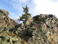 Skalní kvarcitové výchozy na severozápadní straně Ještědského hřbetu., Markéta Vajskebrová, 2014