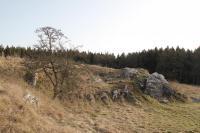 Vápencové tektonické bradlo., Vít Baldík, 2016