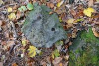 Na balvanech nefelinického bazanitu jsou prohloubeniny po vyvětralých olivínických peckách., Pavla Gürtlerová, 2017