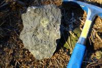 Na vrcholu Plešného a jeho v blízkém okolí se nachází množství rozptýlených balvanů nefelinického bazanitu s olivínickými peckami - shluky krystalů olivínu., Pavla Gürtlerová, 2017