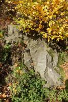 Typický lužický granodiorit v opuštěném lůmku u silnice ve Vilémově., Pavla Gürtlerová, 2017