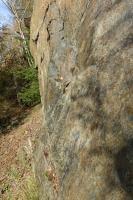 Opuštěný stěnový lom v lužickém granodioritu s doleritovou žílou. Tektonické zrcadlo na kontaktu obou horninových těles., Pavla Gürtlerová, 2017