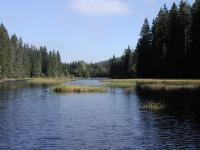 Nejvýše položené a nejmělčí šumavské jezero glaciálního původu s plovoucími ostrůvky., Markéta Vajskebrová, 2004
