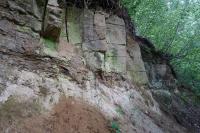 Transgrese křídového moře na říční sedimenty (arkozovité pískovce) triasu. Oddělené 20 cm vrstvou slepence, který je příbojovou facií nastupující mořské sedimentace., Pavla Gürtlerová, 2018
