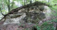 Transgrese křídového moře na říční sedimenty (arkozovité pískovce) triasu. Na fotografii pouze triasové sedimenty. Křídové sedimenty v této východní části byly zdenudovány., Pavla Gürtlerová, 2018