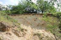 Tektonicky postižené písky karpatu v pískovně v Litenčicích., Pavla Tomanová Petrová, 2018