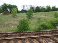 Celkový pohled na lokalitu - transgrese brněnských písků na granodiority brněnského masivu., Pavel Hanžl, 2018