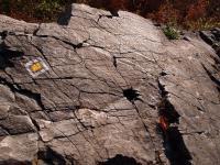 Vrchol Špičáku je tvořen světle šedozeleným fonolitem, součást jedné ze dvou mohutných rovnoběžných čočkovitých žil směru V-Z., Markéta Vajskebrová, 2018