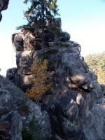 Skalní výchozy silicifikovaných křemenných pískovců jizerského souvrství v blízkosti lužické poruchy na svazích Kamenného vrchu., Markéta Vajskebrová, 2018