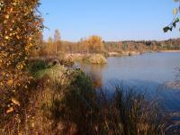 Evidované ložisko rašeliny je částečně zakryto rybníkem, částečně zarůstá náletovými dřevinami., Markéta Vajskebrová, 2018