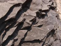 Několik čedičových skalek představují  zbytky někdejšího lávového pole. , Markéta Vajskebrová, 2018