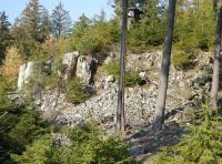 Skalní výchoz tektonicky porušených kambrických slepenců na návrší Pod bučinou, Tomáš Vorel, 2018