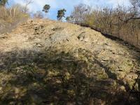 Výchozy proterozoických hornin kralupsko-zbraslavské skupiny - šedé prachovce, břidlice s tenkými vložkami drob - jsou často detailně zvrásněné. , Markéta Vajskebrová, 2019