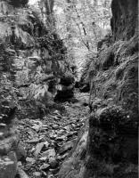 Smečenský kaňon v pískovcové části., Rudolf Hylský, 1950